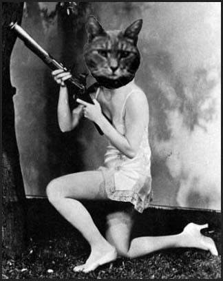 Sanity-free Feline
